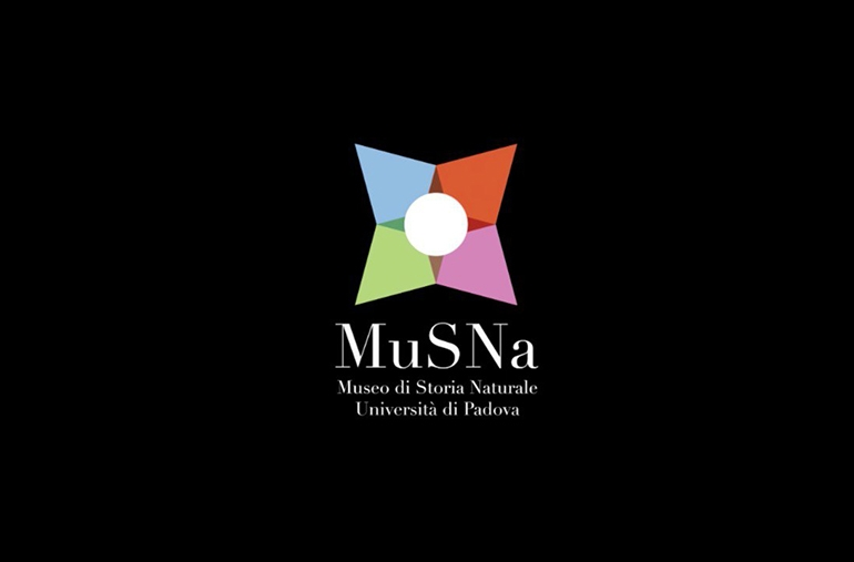 MuSNa MUSEO STORIA NATURALE